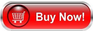 Agent Goal Planner Buy-Now